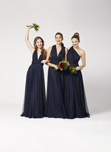 Twobirds MIDNIGHT BLUE Tulle Style/ballgown Length Dress