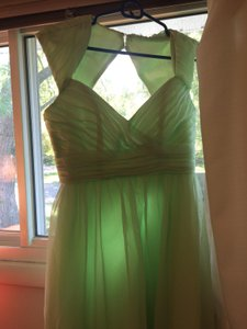 Eden Light Green Dress