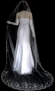 Elegant Beaded Embroidery Cathedral Length Wedding Veil In White