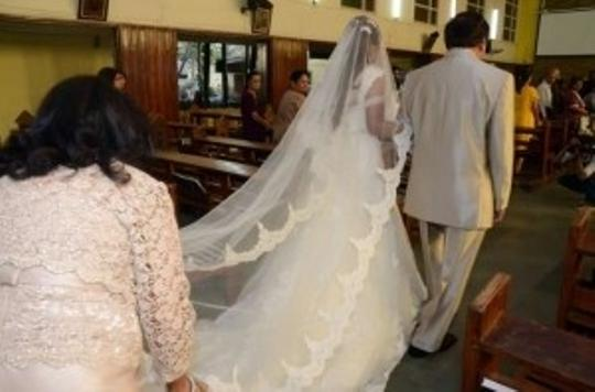 Ivory Long Catheral Mantilla / Alecon Lace Bridal Veil