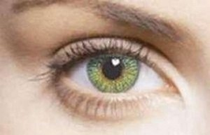 Other Green Freshlook Colorblends Non Prescription Colored Contact Lenses