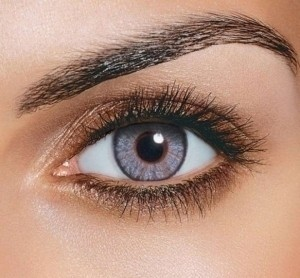 Freshlook Gray Freshlook Colorblends Non Prescription Colored Contact Lenses