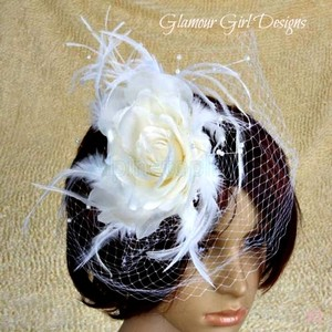 Sensational Birdcage Veil In White