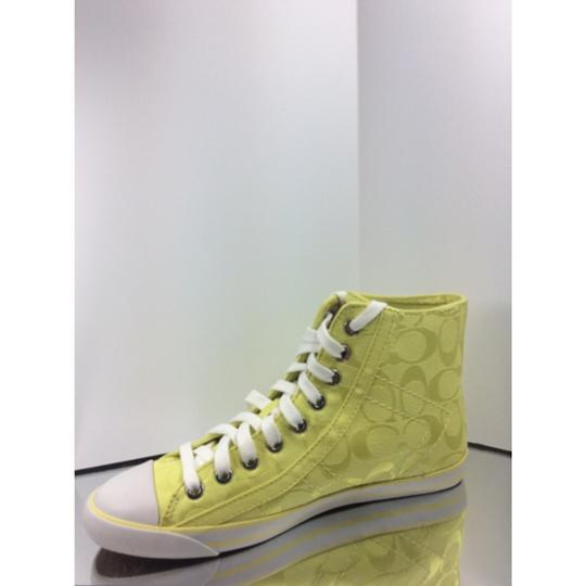 Coach Yellow / Citrine Athletic