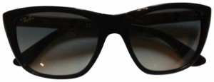 Ray-Ban Ray Ban RB 4154 black with case