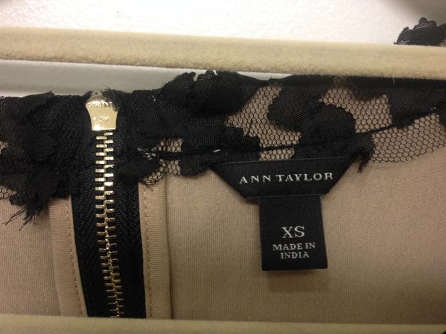 Ann Taylor B White Cap Sleeves Rose Fall Holiday Top black, tan