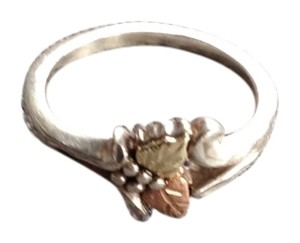 Other Sterling with 12 K Gold Ring