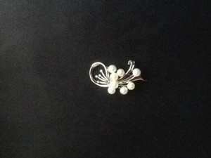 Other White Gold ,Pearls Brooch.