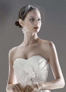 David's Bridal Ivory Birdcage Tulle Blusher with Scattered Crystals Bridal Veil