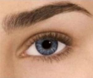 Freshlook Sterling Gray Freshlook Colorblends Non Prescription Colored Contact Lenses