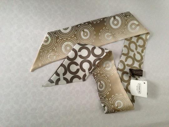 Coach Coach 97640 OP ART Ombre Pony Scarf with Sequins Gray
