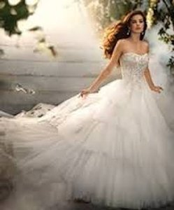 Alfred Angelo Alfred Angelo Disney Bridal Collection Cinderella Platinum Wedding Dress #209 Wedding Dress