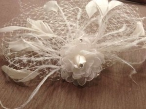 Ivory Birdcage Veiling with Swarovski Crystal & Feather Accents Bridal Veil