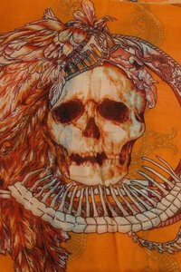 Skull Print Orange Multitone Fashion Scarf