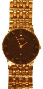 Citizen Citizen (Model# 5420-F41884Y) - [ Roxanne Anjou Closet ]