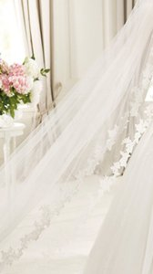 Pronovias Off White Long New V-5214 Cathedral 2t Bridal Veil