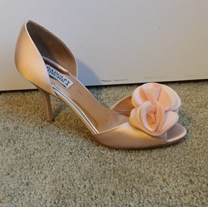 Badgley Mischka Rose Pumps Size US 8.5 Regular (M, B)