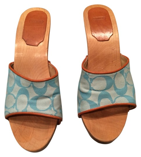 Coach teal Mules