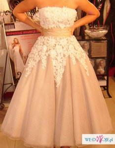 Justin Alexander Ivory Taupe Tulle and Satin 8465 Vintage Wedding Dress Size 2 (XS)