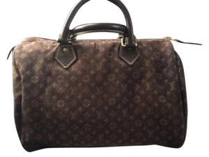 Louis Vuitton Speedy Mini Canvas Monogram Tote in brown