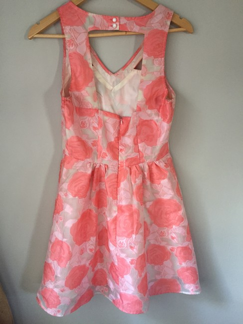 Nasty Gal short dress Pink and white Floral Wedding Summer Spring Roses on Tradesy Image 2