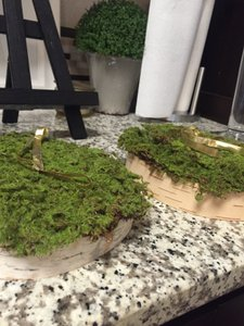 Birch Wood With Moss Ringbearer Pillow Slabs