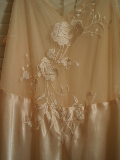 Preload https://item5.tradesy.com/images/cabernet-peach-like-new-long-nightgown-146889-0-0.jpg?width=440&height=440