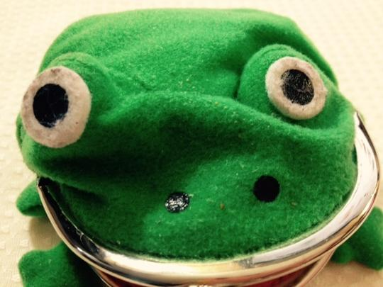 Other LUCKY FROG Coin Purse
