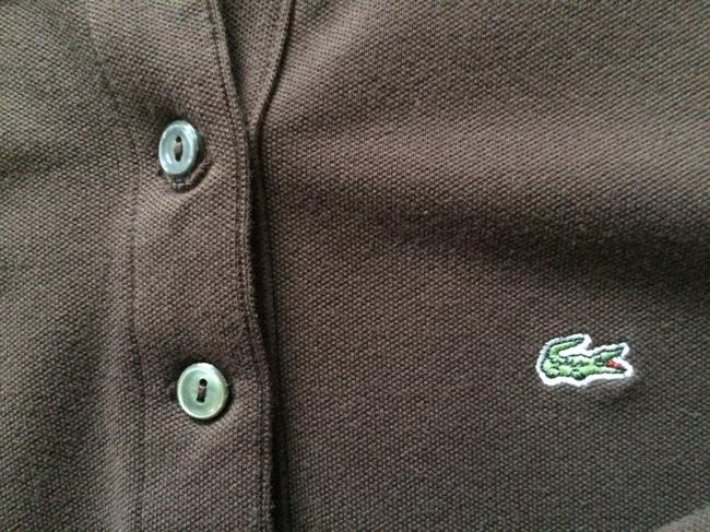 Lacoste T Shirt Brown