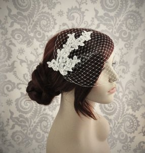 Ivory Or Off White Birdcage Lace Bridal Veil