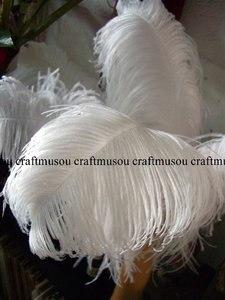 White Ostrich Feather 22-24 Inches 20 Pieces Centerpiece