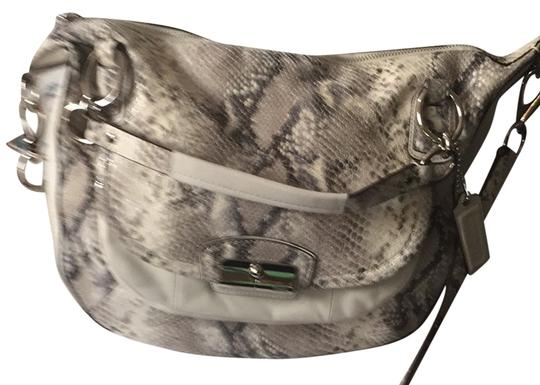 Preload https://img-static.tradesy.com/item/1492176/coach-christian-white-python-hobo-bag-0-0-540-540.jpg