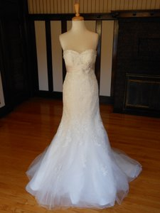 Pronovias Off White Lace Dago Destination Wedding Dress Size 8 (M)
