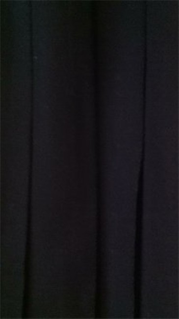 Preload https://img-static.tradesy.com/item/149634/willow-ridge-black-classic-pleated-excellent-quality-and-condition-midi-skirt-size-12-l-32-33-0-0-650-650.jpg