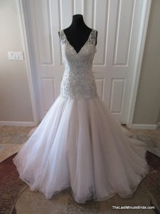 Pronovias Bonanza Wedding Dress