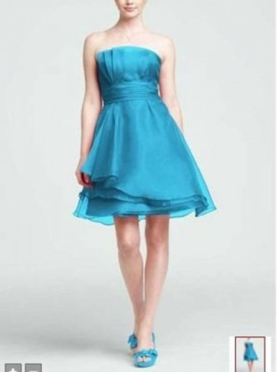David's Bridal Malibu F14335 Feminine Bridesmaid/Mob Dress Size 4 (S)