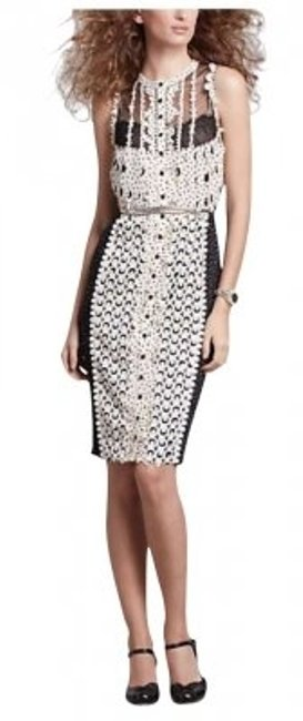 Preload https://item4.tradesy.com/images/anthropologie-black-and-white-lastercut-sheath-lace-knee-length-night-out-dress-size-petite-10-m-150283-0-0.jpg?width=400&height=650
