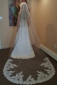 Bridal Cathedral Veil Lace With Comb 1 Tier
