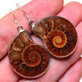 Other AMMONITE FOSSIL 100% SOLID 925 STERLING SILVER HOOKS EARRINGS 1 5/8""