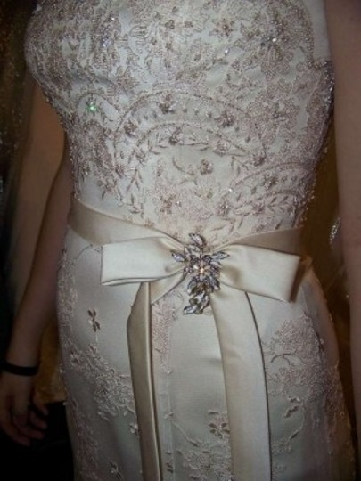 Private Label by G Champagne/Ivory/Pink Style #749 Vintage Wedding Dress Size 6 (S)