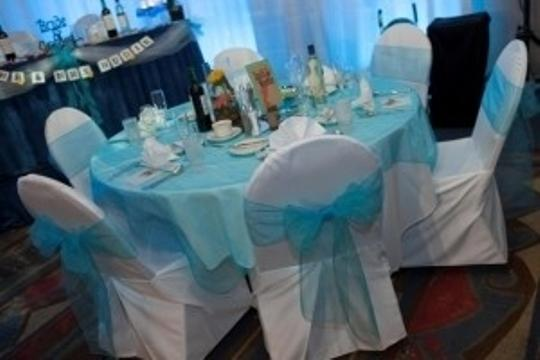 Turquoise Organza Chair Sashes (100 Count) Reception Decoration