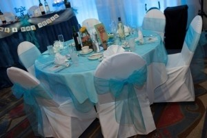 Turquoise Organza Table Overlays (20 Count) Tablecloth