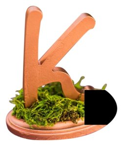 Set Of 13 Copper Painted Table Numbers (letters)