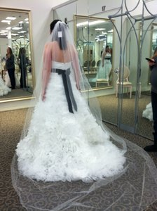 David's Bridal Soft White Long Cathedral with Gems Bridal Veil