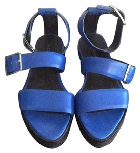 Alexander Wang Blue, Black Sandals