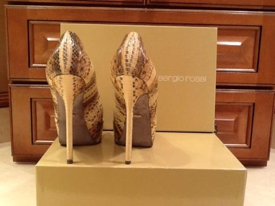 Sergio Rossi Beige Brown Pumps