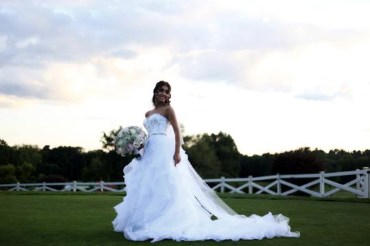 DaVinci Bridal White Organza Princess Cut Ball Gown Casual Wedding Dress Size 4 (S) Image 5