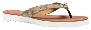Coach Flip Flop Summer New Khaki Sandals