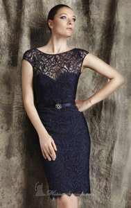 Theia Navy Lace 881247 Formal Bridesmaid/Mob Dress Size 12 (L)
