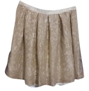 Francesca's Skirt Pewter